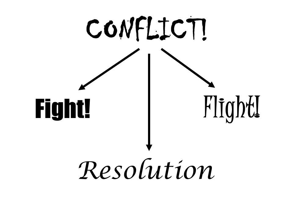 CONFLICT! Fight! Resolution Flight!