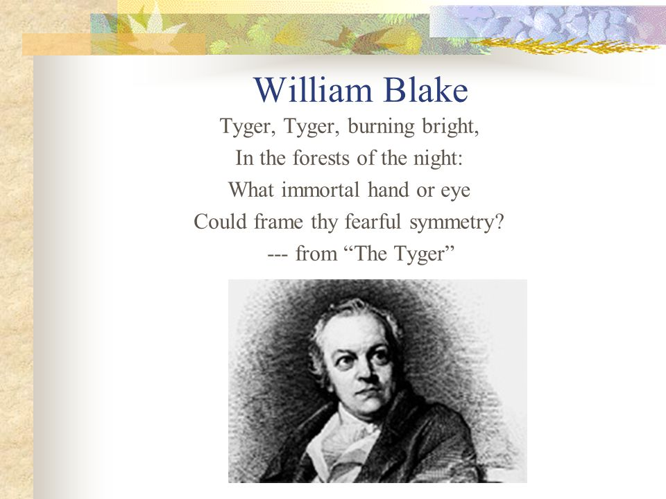 "William Blake Tyger, Tyger, burning bright, In the forests of the night: What immortal hand or eye Could frame thy fearful symmetry? --- from ""The Tyg"