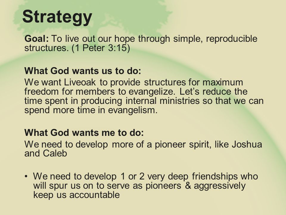 Church Planting Goal: To spread our hope through starting new churches Sharing the building and resources Sharing elder plurality Elder leading a team (hope to plant by 2015, if not sooner)