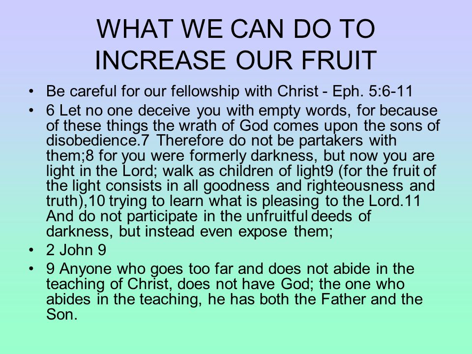 WHAT WE CAN DO TO INCREASE OUR FRUIT Be careful for our fellowship with Christ - Eph.