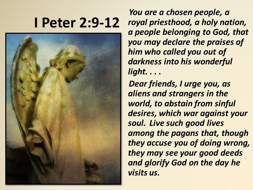 I Peter 2:9-12 You are a chosen people, a royal priesthood, a holy nation, a people belonging to God, that you may declare the praises of him who called you out of darkness into his wonderful light....