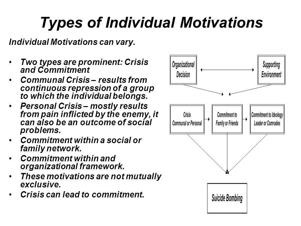 Types of Individual Motivations Individual Motivations can vary.