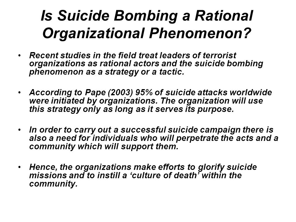 Is Suicide Bombing a Rational Organizational Phenomenon.