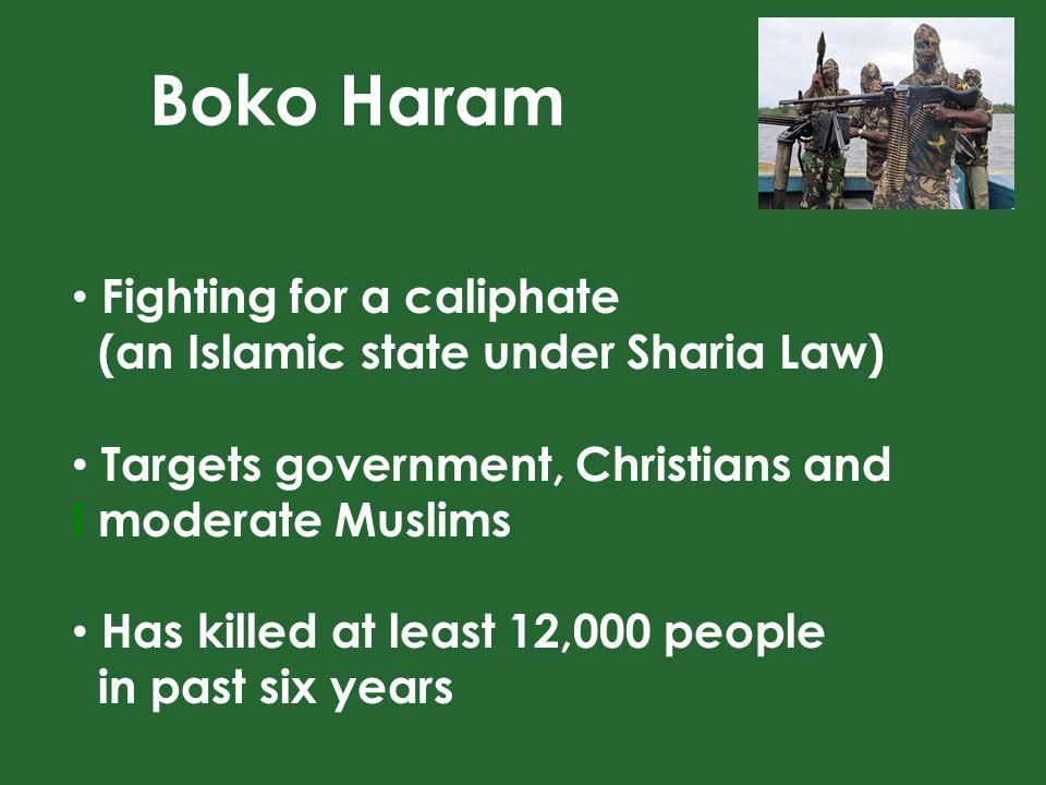 Western education is forbidden The Boko Haram flag