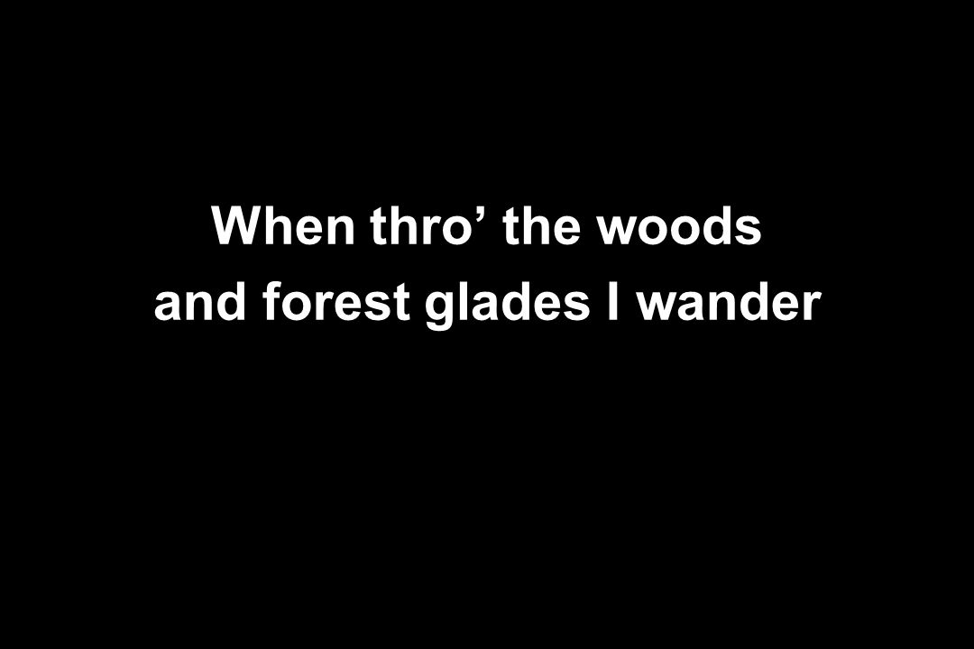 When thro' the woods and forest glades I wander