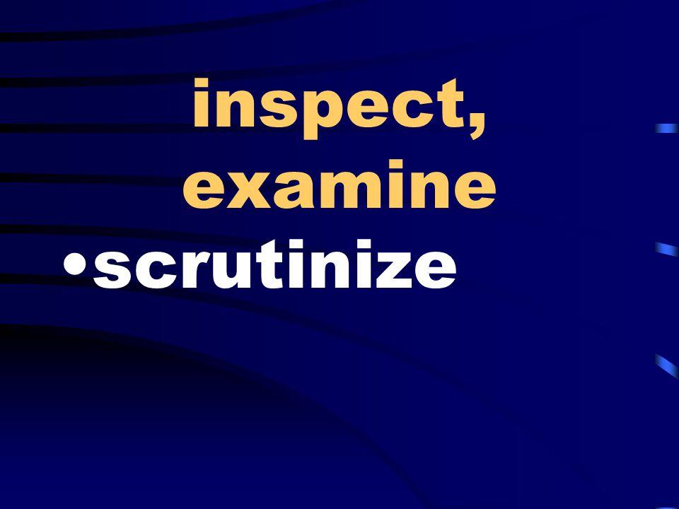inspect, examine scrutinize