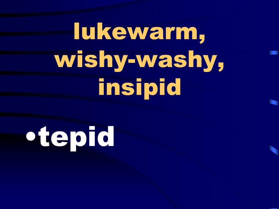 lukewarm, wishy-washy, insipid tepid