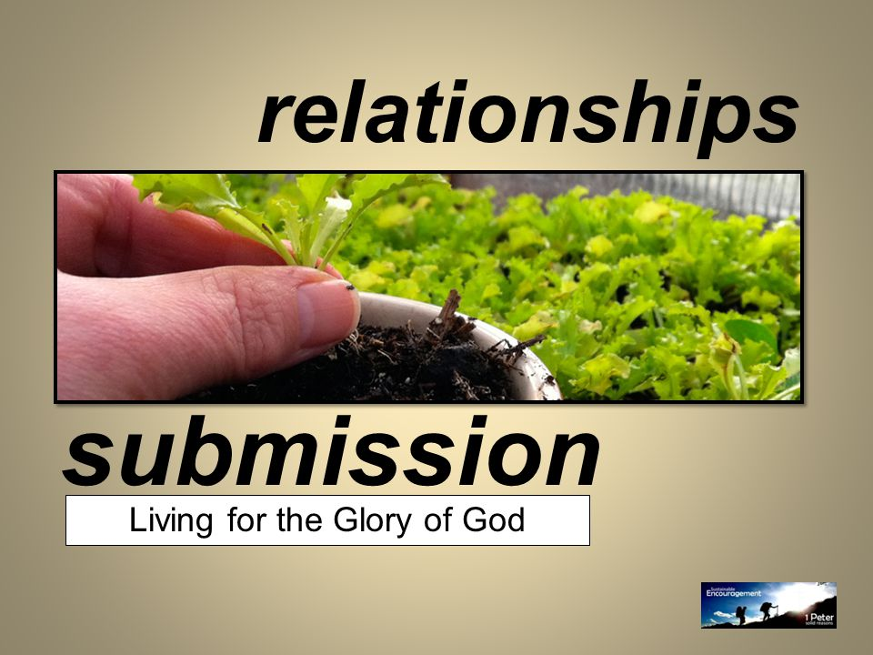 submission relationships Living for the Glory of God