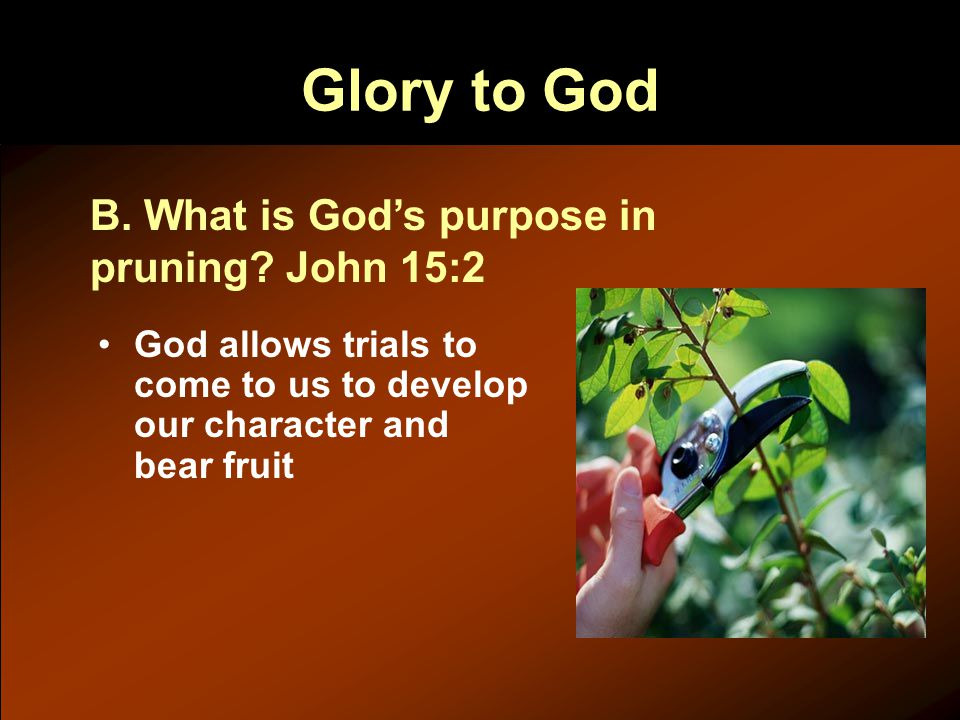 Glory to God God allows trials to come to us to develop our character and bear fruit B.