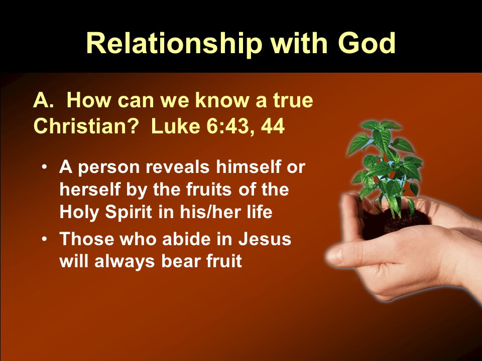 Relationship with God A person reveals himself or herself by the fruits of the Holy Spirit in his/her life Those who abide in Jesus will always bear fruit A.