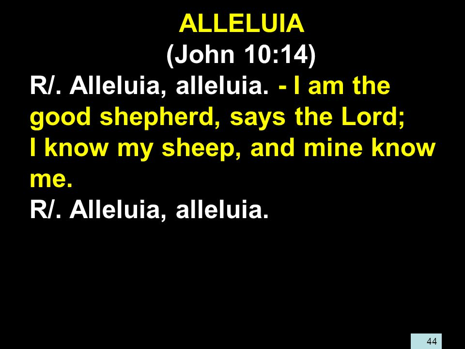 44 ALLELUIA (John 10:14) R/. Alleluia, alleluia. - I am the good shepherd, says the Lord; I know my sheep, and mine know me. R/. Alleluia, alleluia.