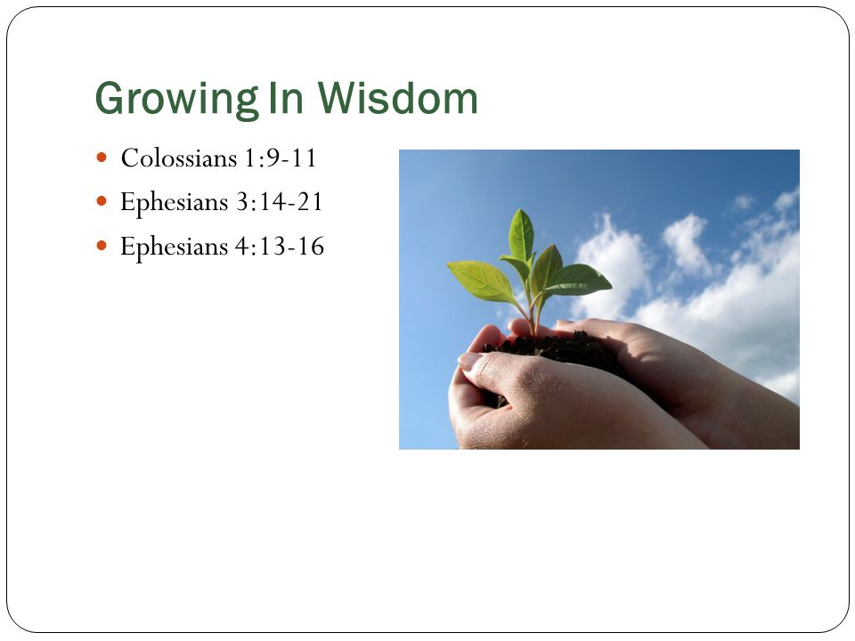 Growing In Wisdom Colossians 1:9-11 Ephesians 3:14-21 Ephesians 4:13-16