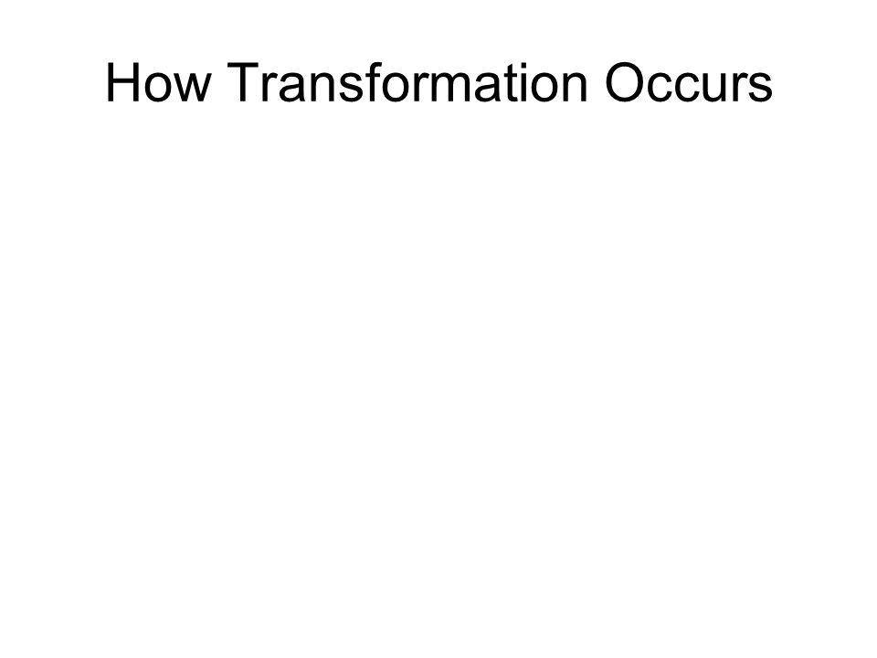 How Transformation Occurs