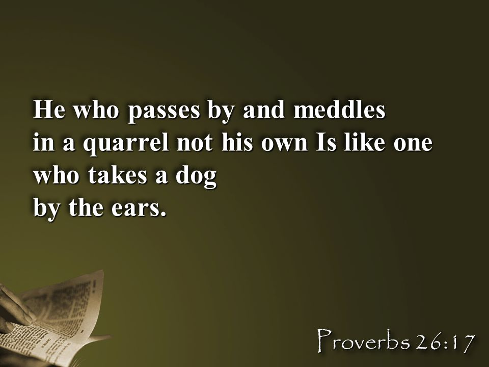 He who passes by and meddles in a quarrel not his own Is like one who takes a dog by the ears. He who passes by and meddles in a quarrel not his own I
