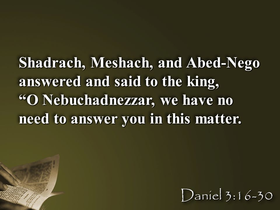 """Shadrach, Meshach, and Abed-Nego answered and said to the king, """"O Nebuchadnezzar, we have no need to answer you in this matter. Shadrach, Meshach, an"""