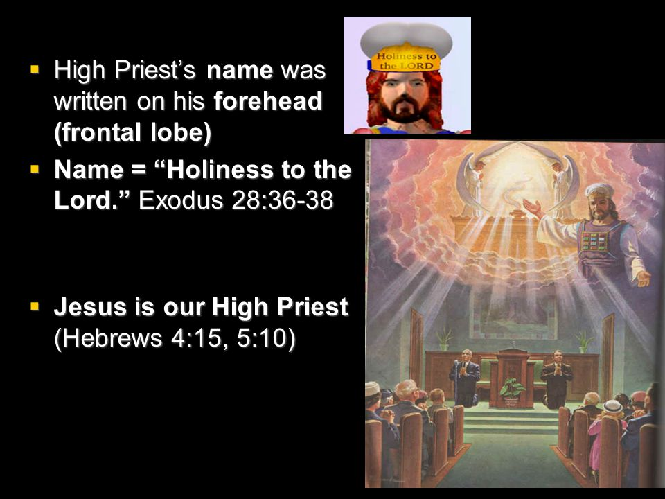  High Priest's name was written on his forehead (frontal lobe)  Name = Holiness to the Lord. Exodus 28:36-38  Jesus is our High Priest (Hebrews 4:15, 5:10)