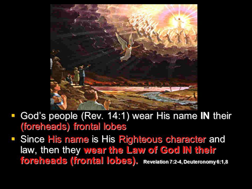  God's people (Rev.