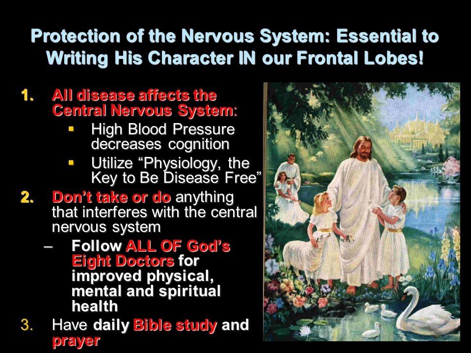 Protection of the Nervous System: Essential to Writing His Character IN our Frontal Lobes! 1.All disease affects the Central Nervous System:  High Bl