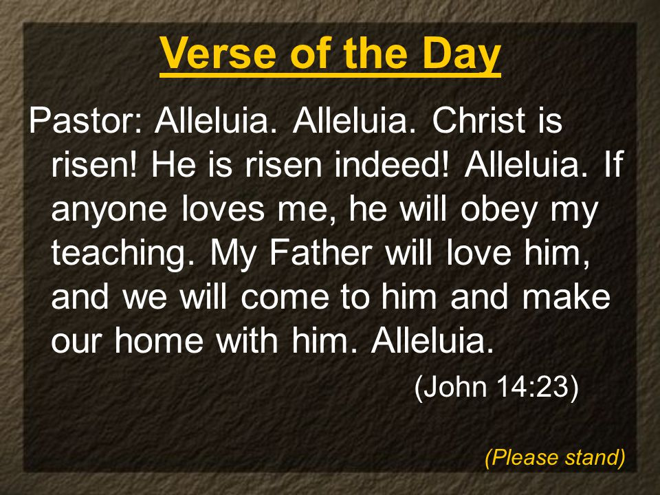 Pastor: Alleluia. Alleluia. Christ is risen. He is risen indeed.