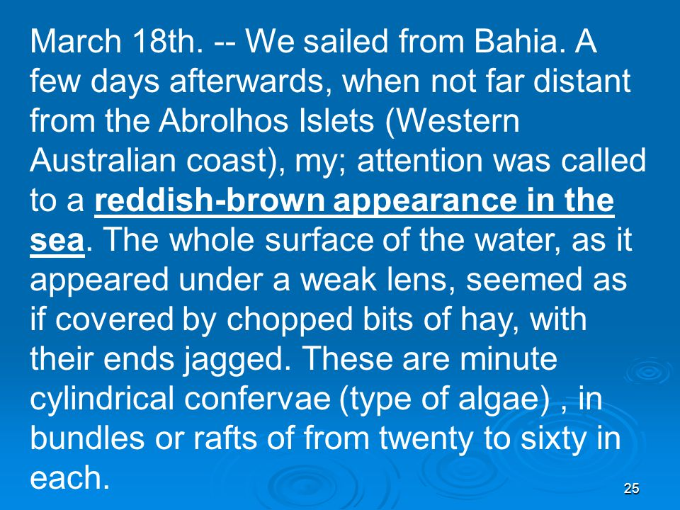 25 March 18th. -- We sailed from Bahia.