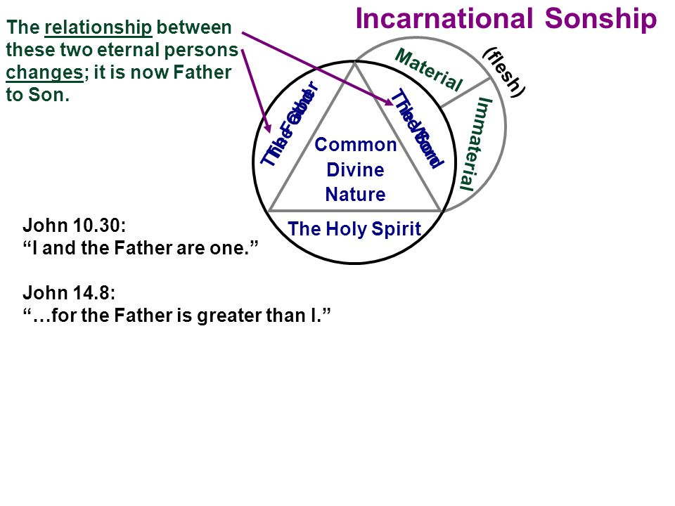Incarnational Sonship Material Immaterial The Holy Spirit Common Divine Nature The relationship between these two eternal persons changes; it is now F