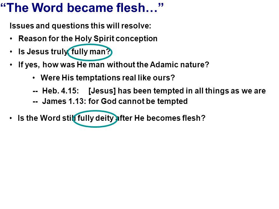 The Humanity of Jesus Personhood of the Word (essence of identity) I BONESBLOOD BRAIN ORGANS MUSCLEHEART ETC.