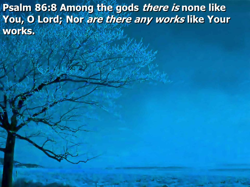 Psalm 86:8 Among the gods there is none like You, O Lord; Nor are there any works like Your works.