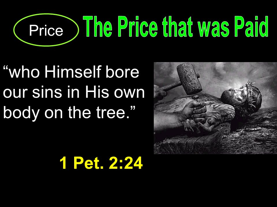 Price who Himself bore our sins in His own body on the tree. 1 Pet. 2:24