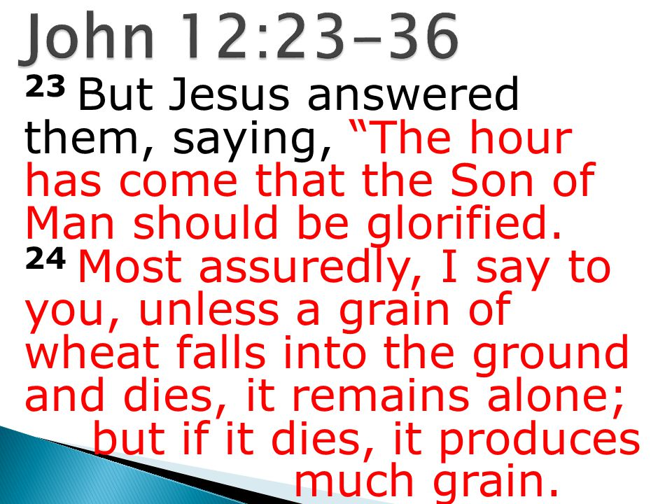 23 But Jesus answered them, saying, The hour has come that the Son of Man should be glorified.