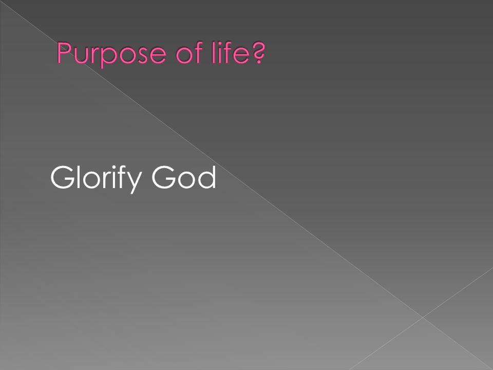 Glorify God
