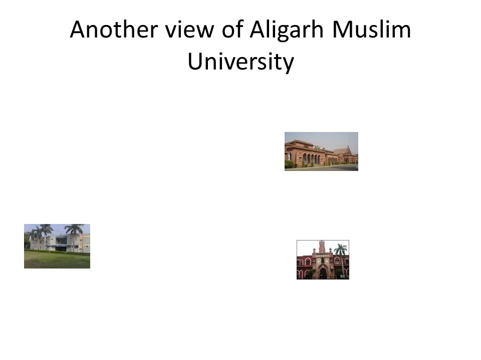 Another view of Aligarh Muslim University
