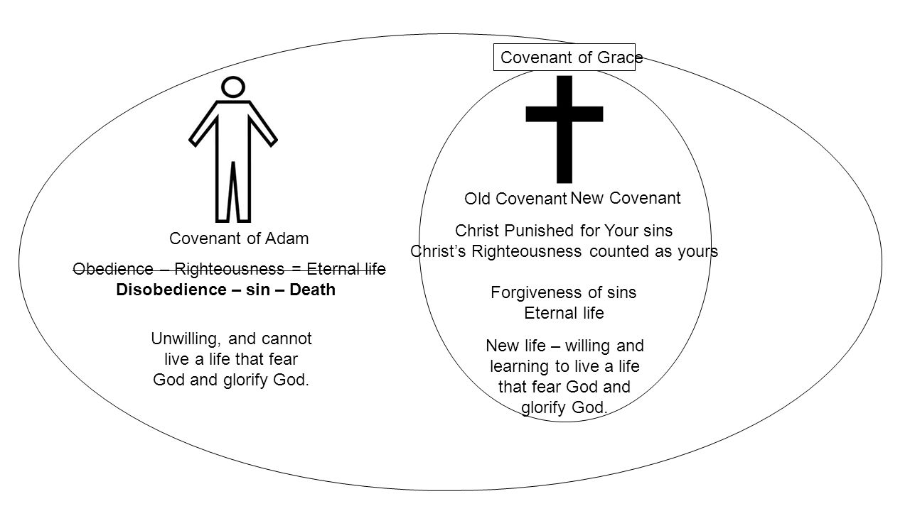 Covenant of Adam New Covenant Old Covenant Obedience – Righteousness = Eternal life Disobedience – sin – Death Christ Punished for Your sins Christ's Righteousness counted as yours Forgiveness of sins Eternal life Unwilling, and cannot live a life that fear God and glorify God.