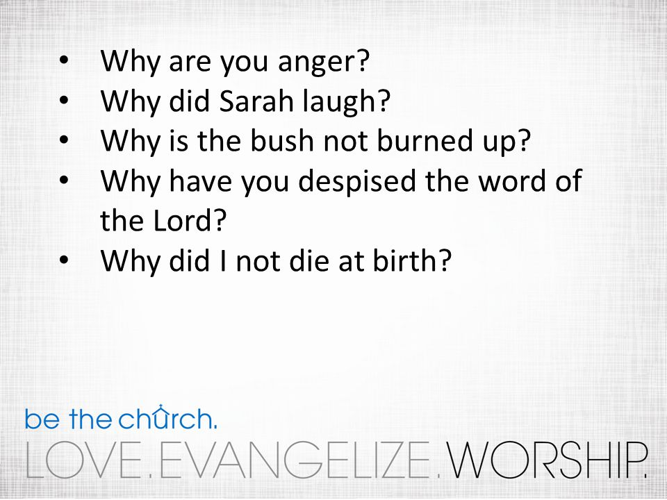 Why are you anger? Why did Sarah laugh? Why is the bush not burned up? Why have you despised the word of the Lord? Why did I not die at birth?