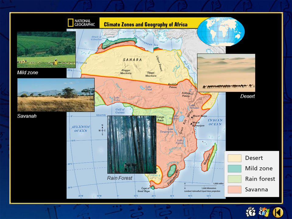 Video 3 Early African Empires Click the mouse button or press the Space Bar to display the answer. Why does Chapurkha Dusimba believe that the study o