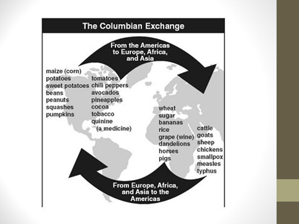 LEFT SIDE ACTIVITY CREATE A CHART OF THE COLUMBIAN EXCHANGE EUROPETHE AMERICAS