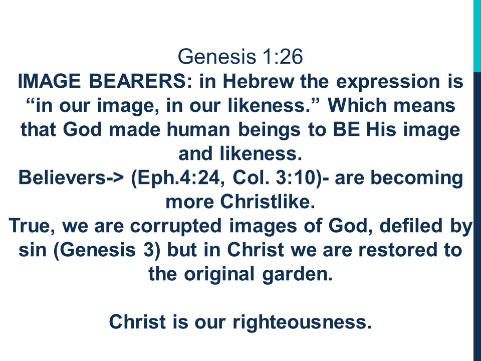 Genesis 1:26 IMAGE BEARERS The term image of God is applied to every human being: male & female He created them.
