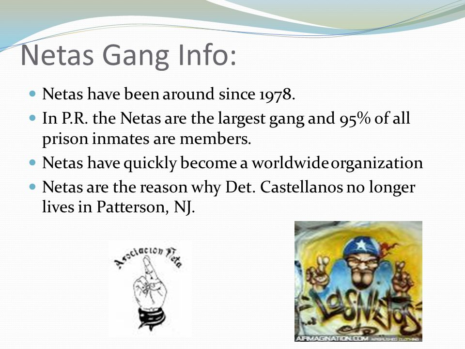 Latin King Gang Info: Latin Kings originated in the 1940's and are still growing at a rapid pace.