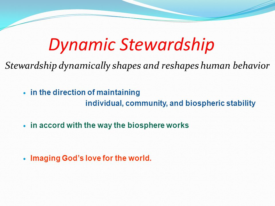 Dynamic Stewardship Stewardship dynamically shapes and reshapes human behavior in the direction of maintaining individual, community, and biospheric stability in accord with the way the biosphere works Imaging God's love for the world.