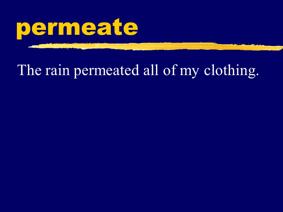 permeate The rain permeated all of my clothing.