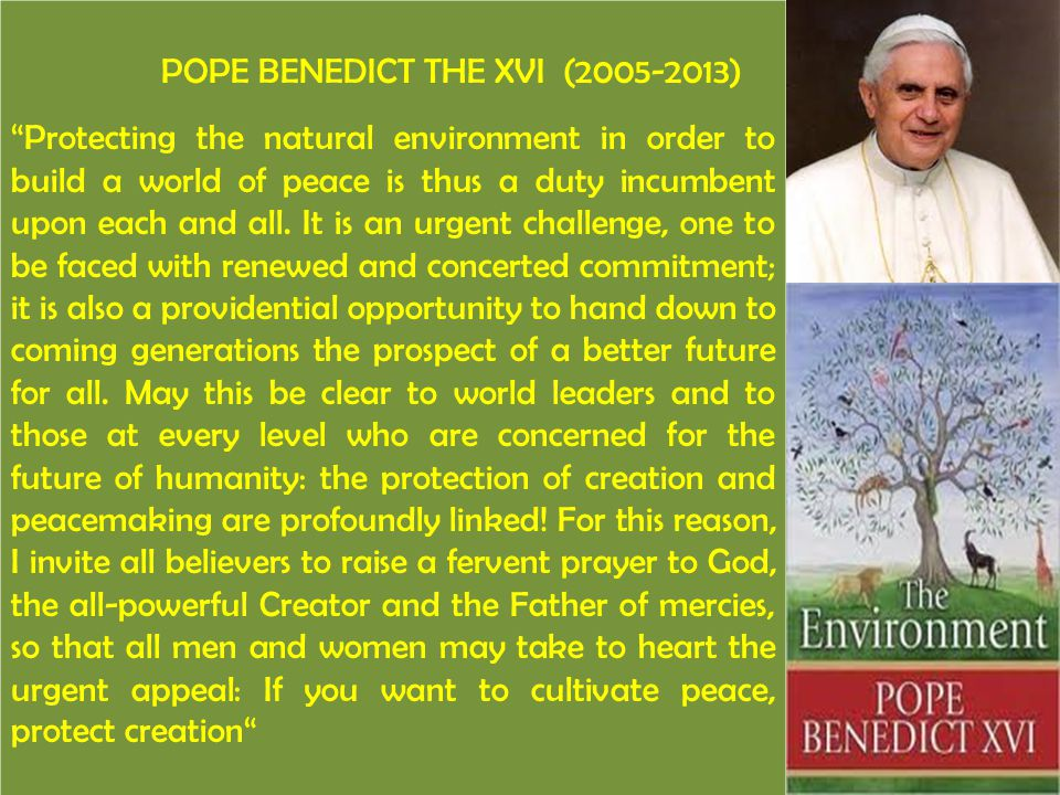 """POPE BENEDICT THE XVI (2005-2013) """"Protecting the natural environment in order to build a world of peace is thus a duty incumbent upon each and all. I"""
