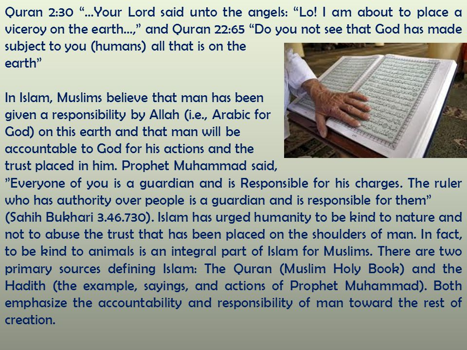"""Quran 2:30 """"…Your Lord said unto the angels: """"Lo! I am about to place a viceroy on the earth…,"""" and Quran 22:65 """"Do you not see that God has made subj"""