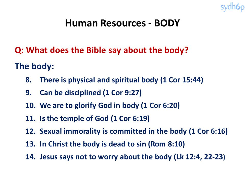 Q: What does the Bible say about the body.