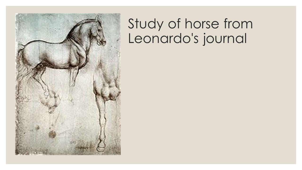 Study of horse from Leonardo s journal