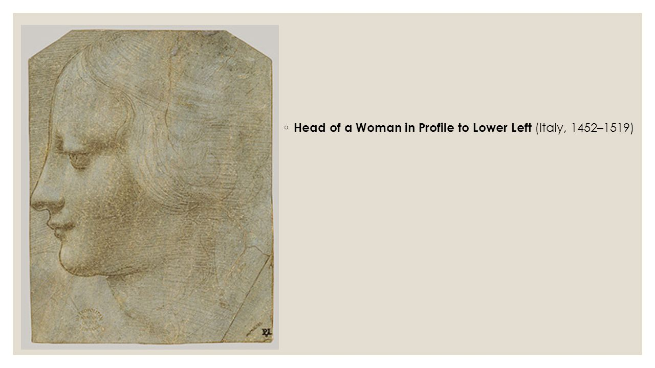 ◦ Head of a Woman in Profile to Lower Left (Italy, 1452–1519)