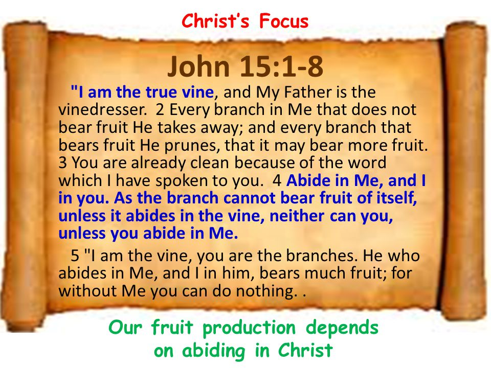 John 15:1-8 I am the true vine, and My Father is the vinedresser.