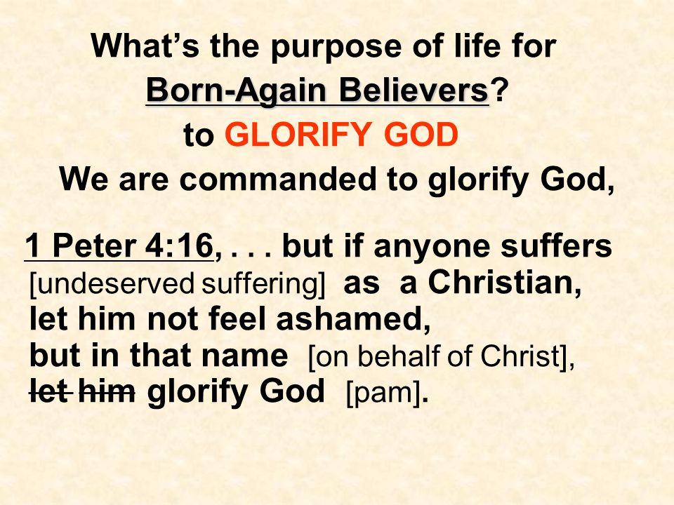 What's the purpose of life for Born-Again Believers Born-Again Believers.
