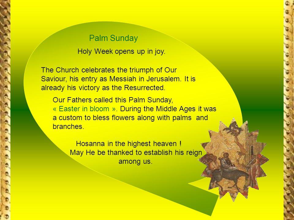 Palm Sunday Holy Week opens up in joy.