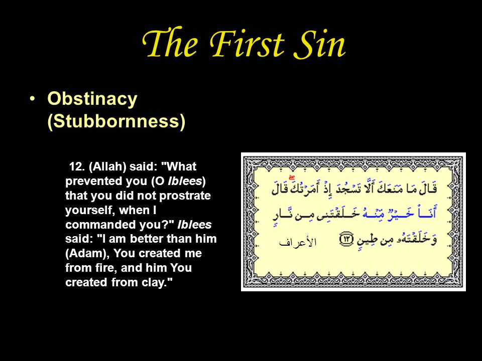 The First Sin Obstinacy (Stubbornness) 12.