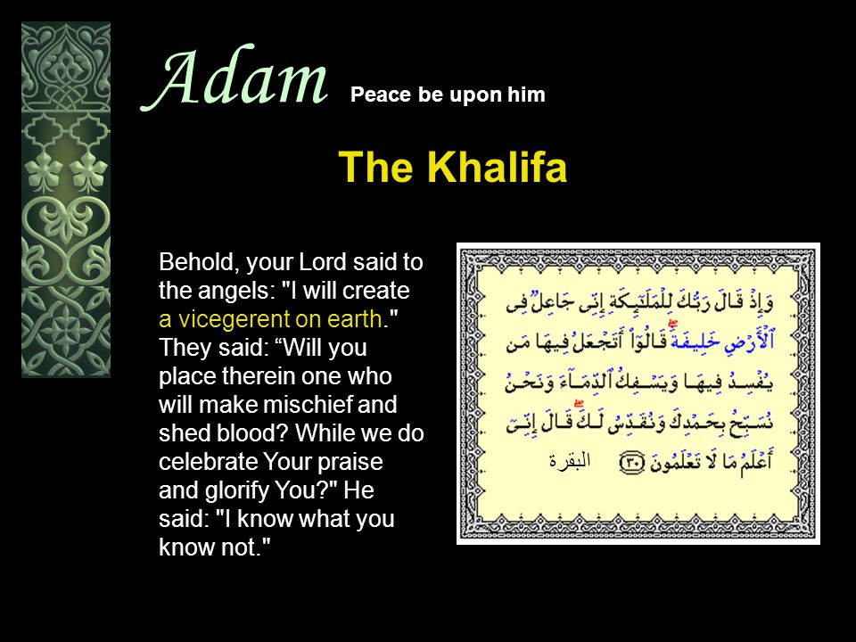 Adam Peace be upon him The Khalifa البقرة Behold, your Lord said to the angels: I will create a vicegerent on earth. They said: Will you place therein one who will make mischief and shed blood.