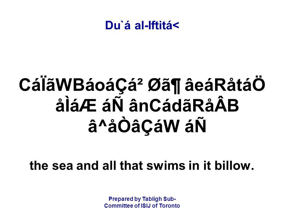 Prepared by Tablígh Sub- Committee of ISIJ of Toronto Du`á al-Iftitá< CáÏãWBáoáÇá² Ø㶠âeáRåtáÖ åÌáÆ áÑ ânCádãRåÂB â^åÒâÇáW áÑ the sea and all that swims in it billow.